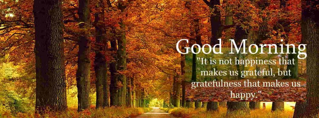 Happiness and gratefulness quote